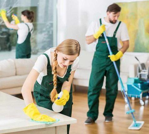 ev temizliği izmir